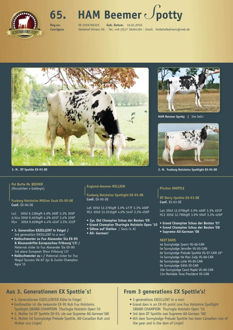 Datasheet for Lot 65. HAM Beemer Spotty