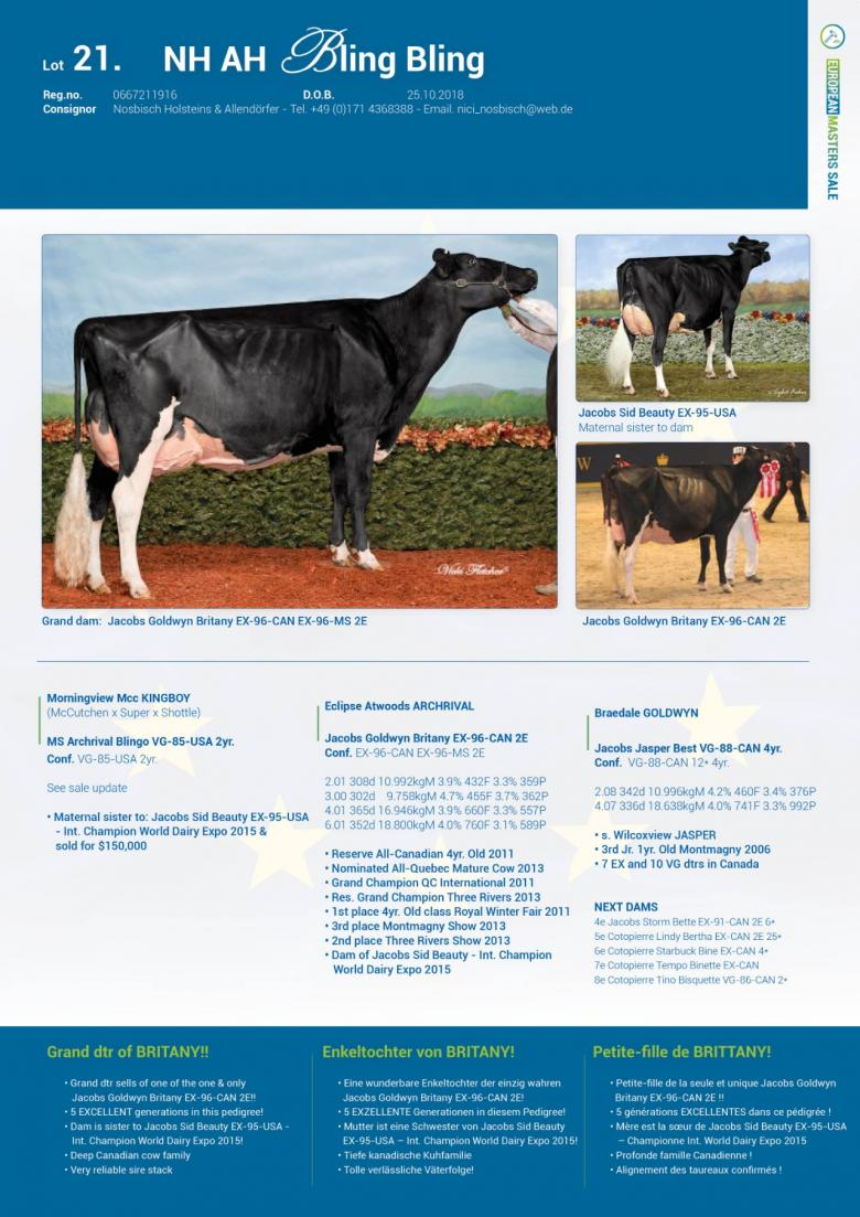 Datasheet for Lot 21. NH AH Bling Bling