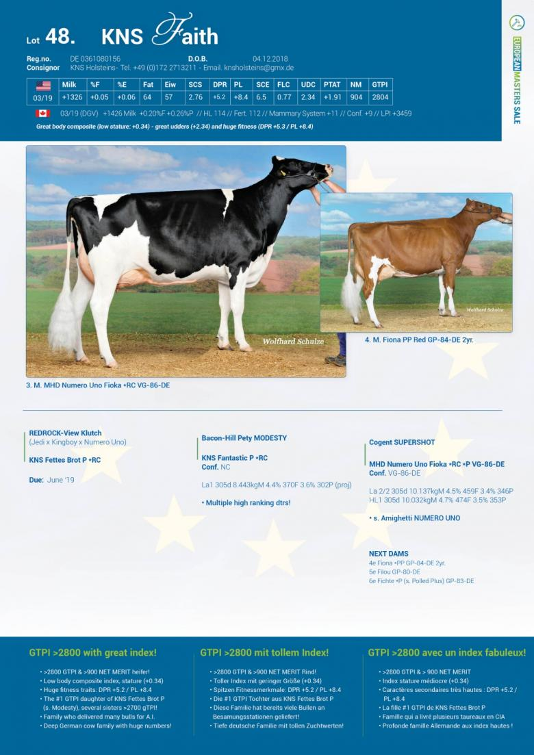 Datasheet for Lot 48. KNS Faith