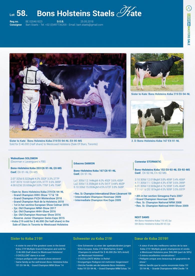 Datasheet for Lot 58. Bons Holsteins Staels Kate