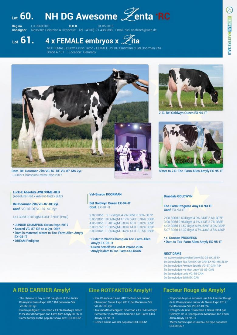 Datasheet for Lot 60. NH DG Awesome Zenta *RC