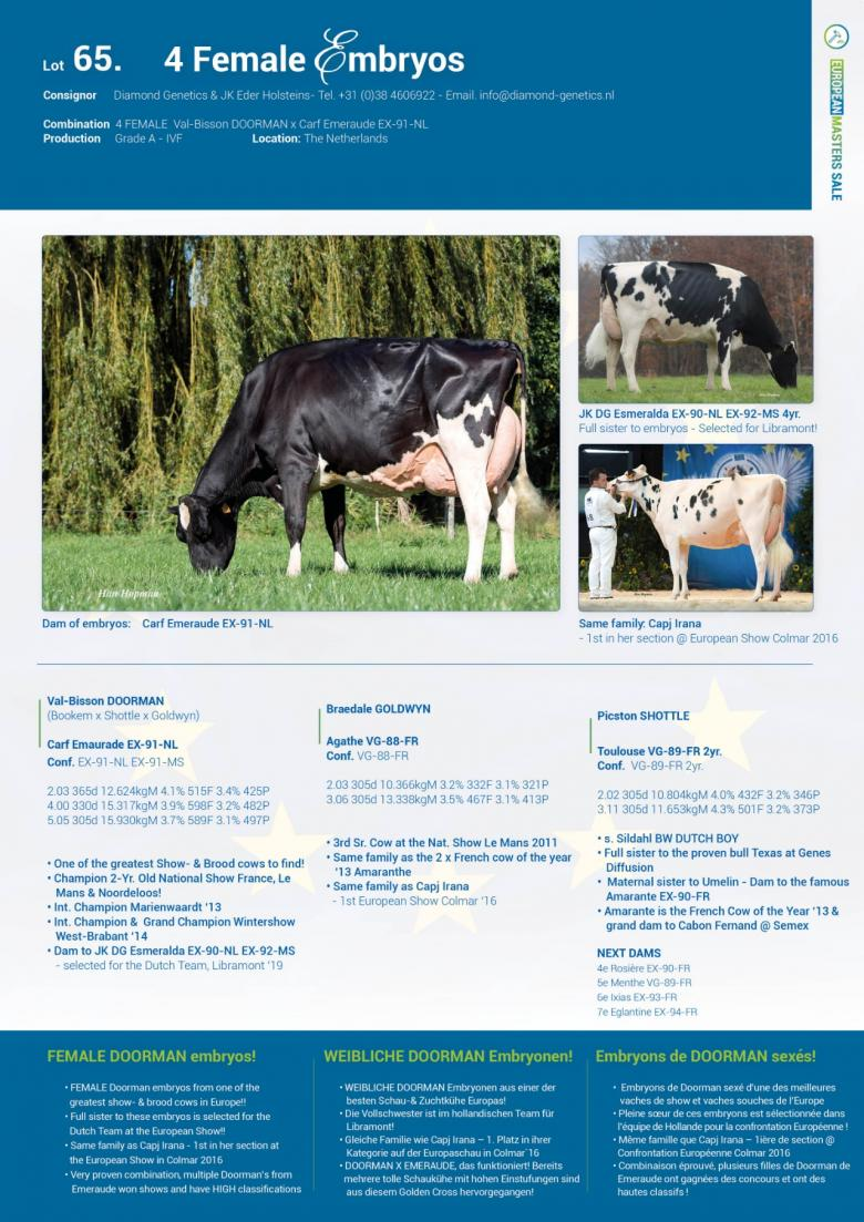Datasheet for Lot 65. 4 FEMALE embryos