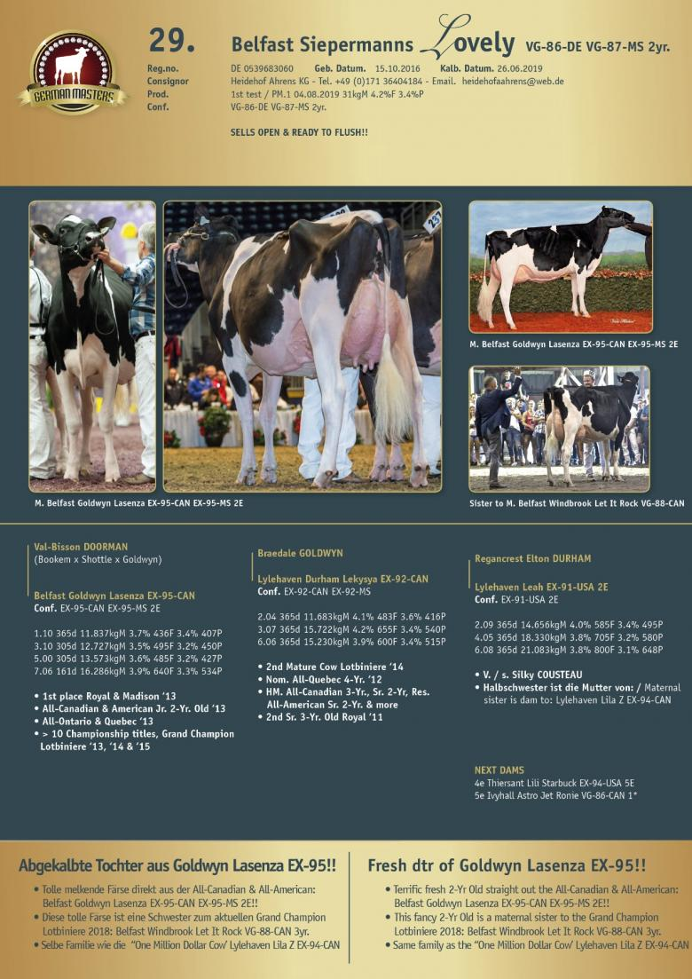 Datasheet for Lot 29. Belfast Siepermanns Lovely VG-86-DE VG-87-MS 2yr.