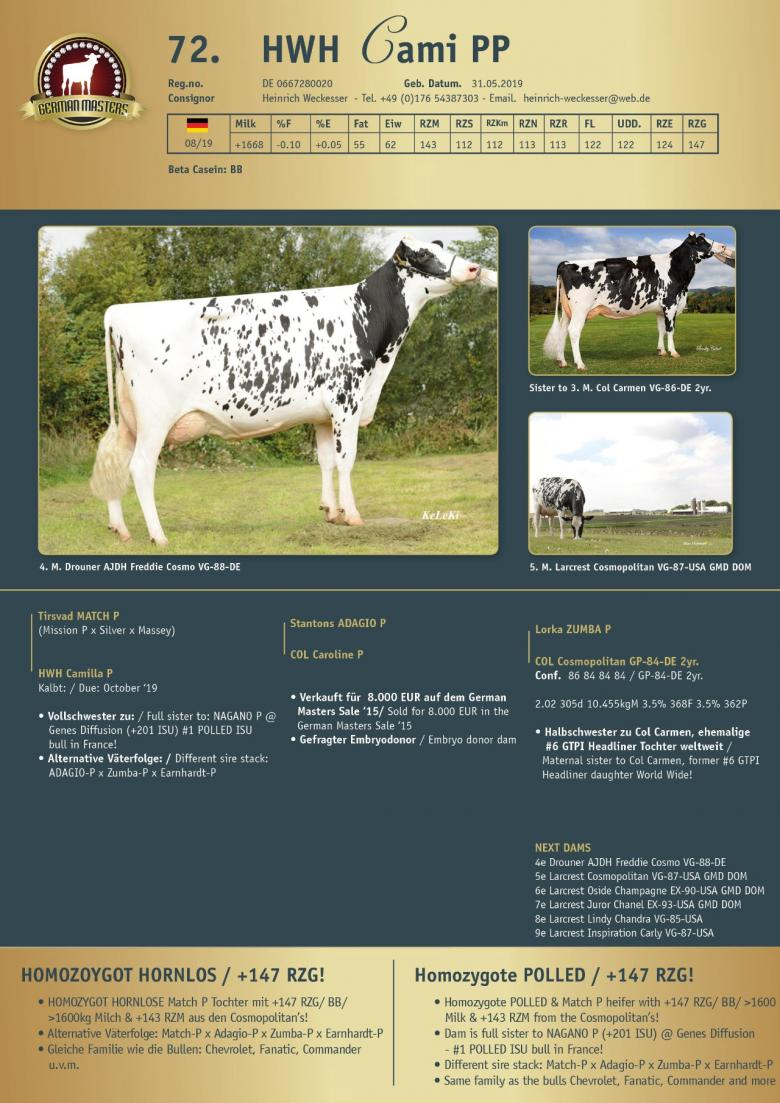 Datasheet for Lot 72. HWH Cami PP