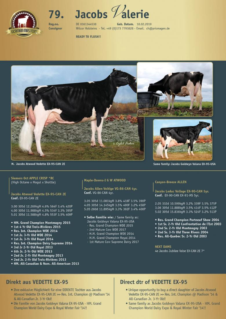 Datasheet for Lot 79. Jacobs Valerie | OUT OF SALE