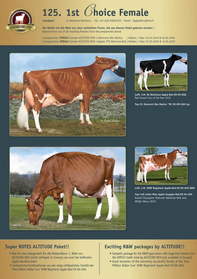 Datasheet for Lot 125. 1st Choice Female