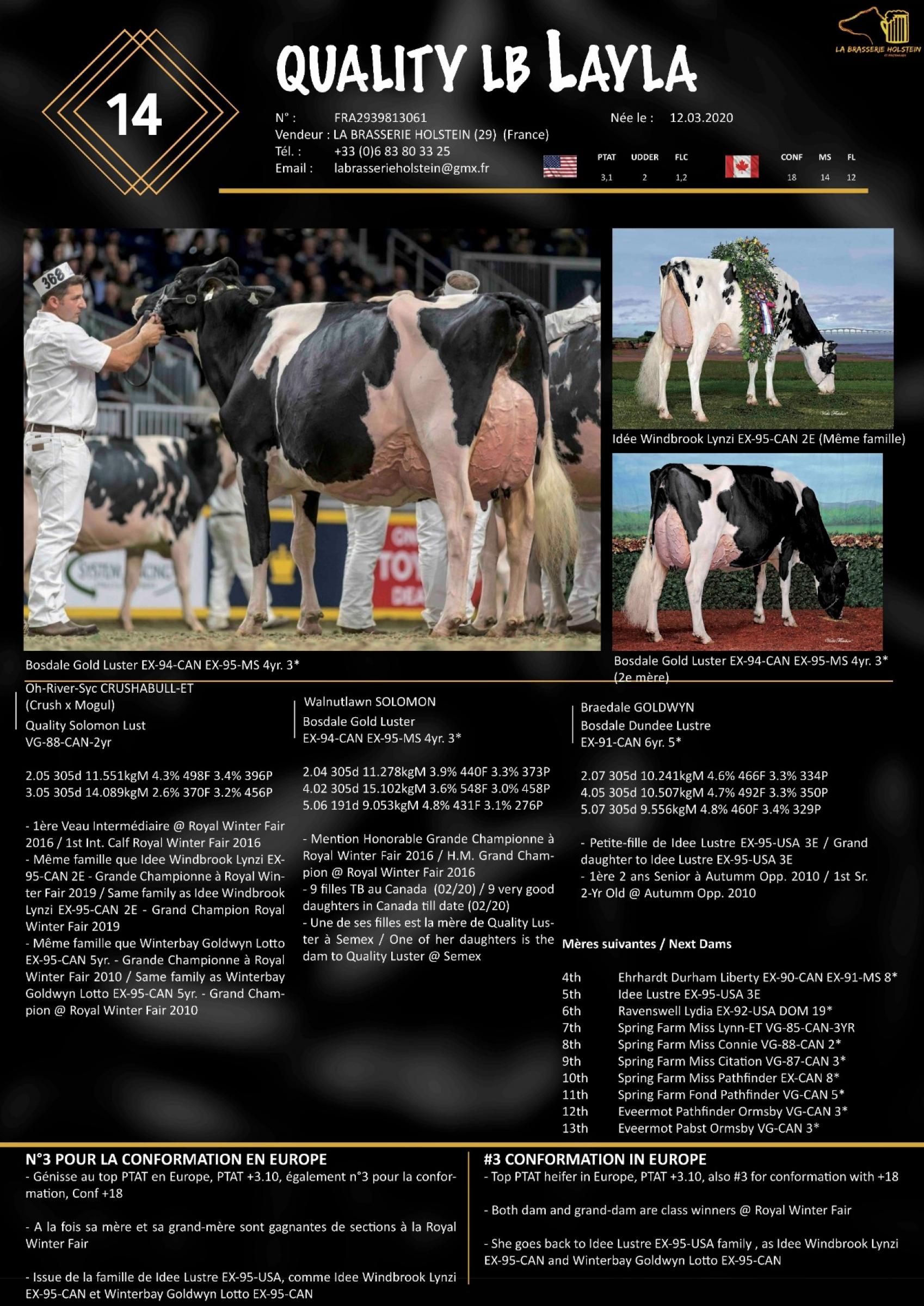 Datasheet for Lot 14. Quality LB Layla