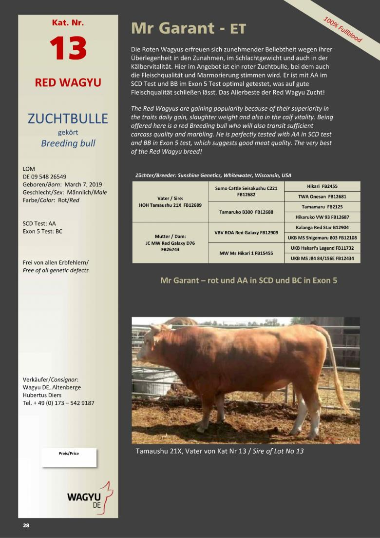 Datasheet for Lot 13. Mr Garant-ET