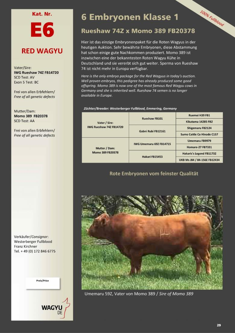 Datasheet for Lot E6. 6 embryos (Grade A) Rueshaw 74Z x  Momo 389 FB20378