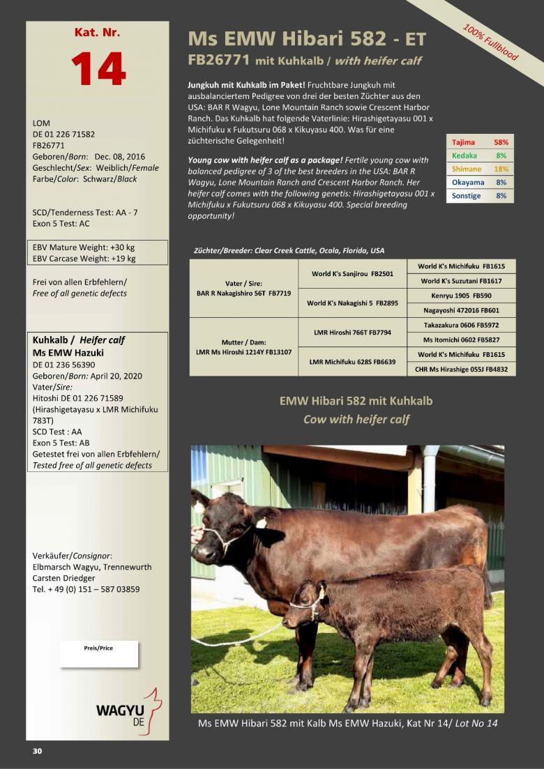 Datasheet for Lot 14. Ms EMW Hibari 582-ET