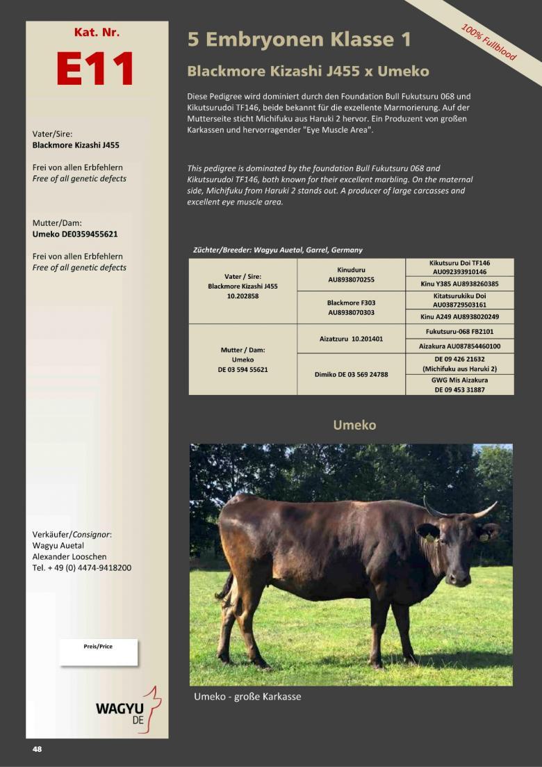 Datasheet for Lot E11. 5 embryos (Grade A) Blackmore Kizashi J455 10.202858 x Umeko DE 03 594 55621