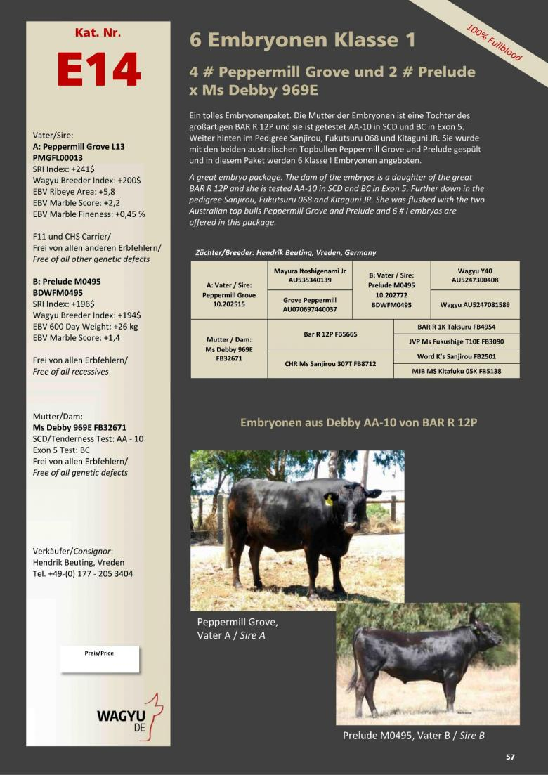 Datasheet for Lot E14. 6 embryos (Grade A) #4 Peppermill Grove / #2 Prelude x Ms Debby 969E