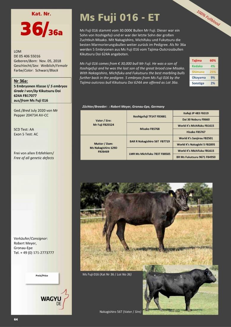 Datasheet for Lot 36A.  5 embryos (Grade A) Kikutsuru Doi 624A FB17077 x Ms Fuji 016-ET DE 05 406 55016